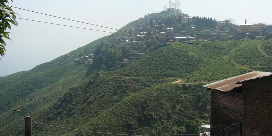 Dow Hill, Kurseong, West Bengal